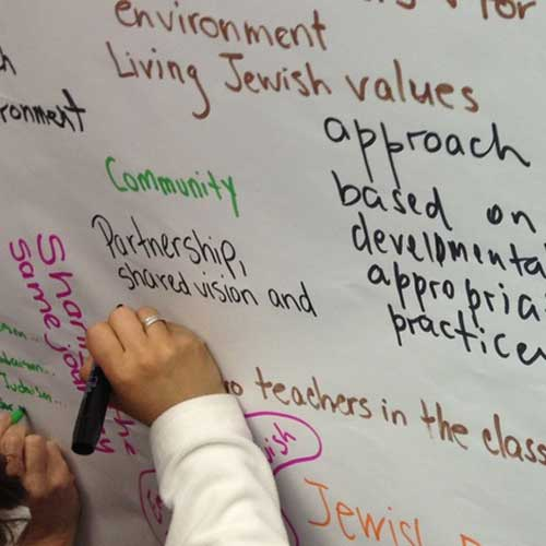 Nurturing and Networking the Seeds of Excellence: A Flexible, Cost-Effective, Blended-Learning Approach to Systemic Change in Jewish Early Childhood Education