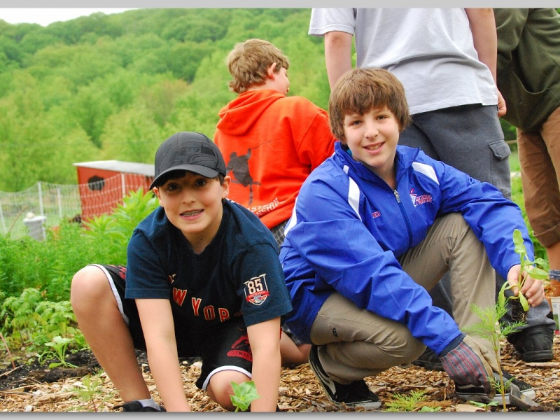 A Synagogue in the Woods: Bringing nature into our 21st Century synagogue and bringing our 21st Century Synagogue into nature