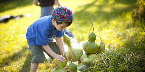 Advancing Jewish Social Justice and Environmental Action: Lessons Learned from Covenant Grantees